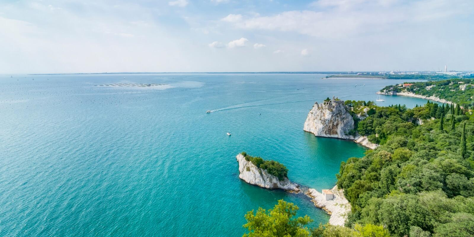 BLUE AREA! A day sailing among the scents and wonders of the Gulf of Trieste!
