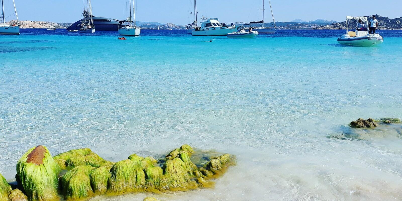 An unforgettable day to discover the Maddalena Archipelago.