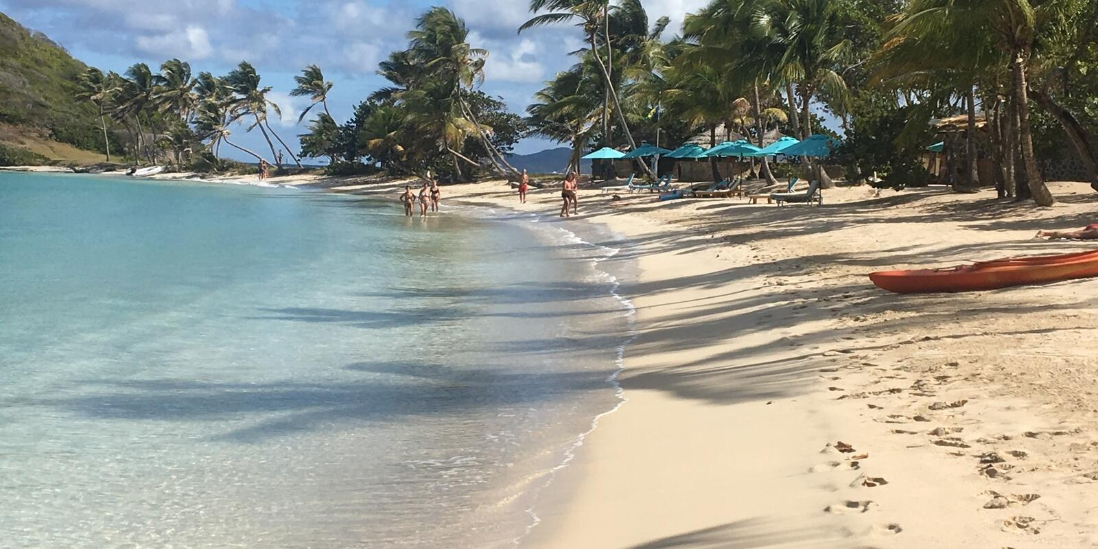 From Martinique to the Grenadines and Tobago Cays. a warm winter