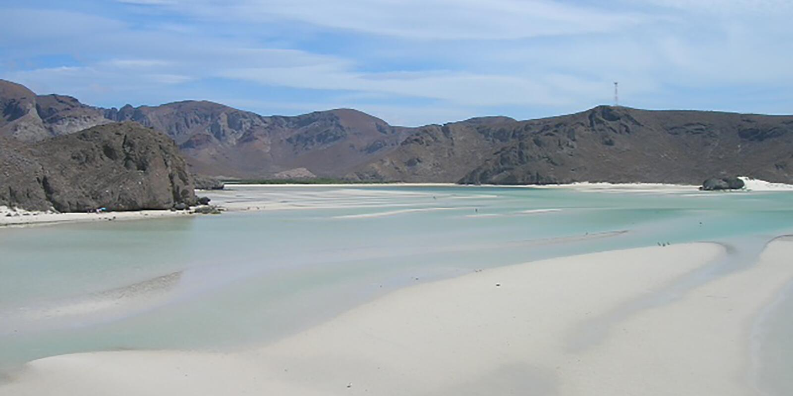 Easter in the Sea of Cortez: whales, giant manta rays, turtles ...